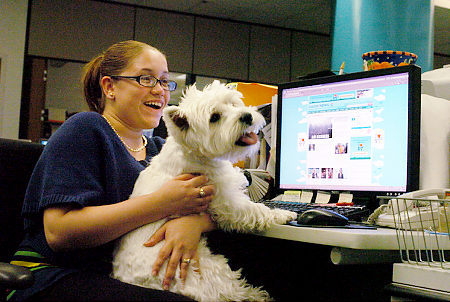 take-your-dog-to-work-101